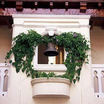 Вьющиеся растения на фасаде