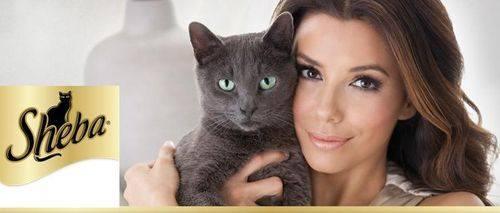 Ева Лонгория в рекламе кошачьего корма Sheba