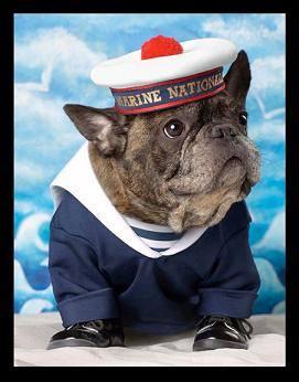 Пёсик Франсуа Нарса — звезда рекламной кампании