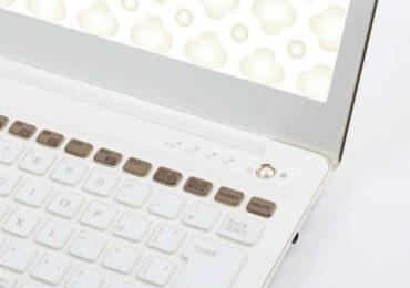 Особенный аккумулятор для женского ноутбука
