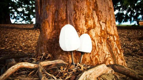 Бумажные фонари несут природу в дом