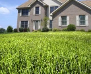 Нужен ли газон перед домом?
